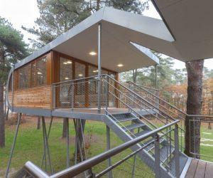 casa-del-arbol-escaleras